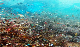 Microplastics contamination in oceans and waterways