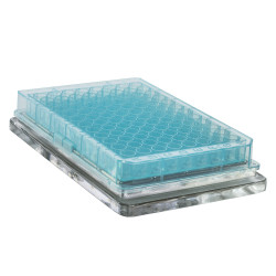 Bel-Art Magnetic Bead Separation Rack for Standard Size Flat Microplates